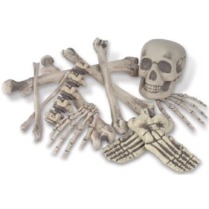 Bag 'O Bones Set (Set of 12)