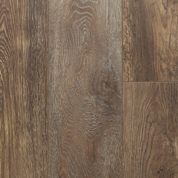 Nostalgia 8 x 48 x 12mm Laminate Flooring in Rocky Road by Dyno Exchange