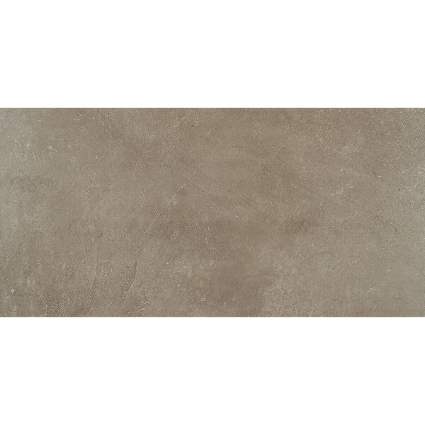 Fairfield 12 x 24 Porcelain Field Tile in Noce by Itona Tile