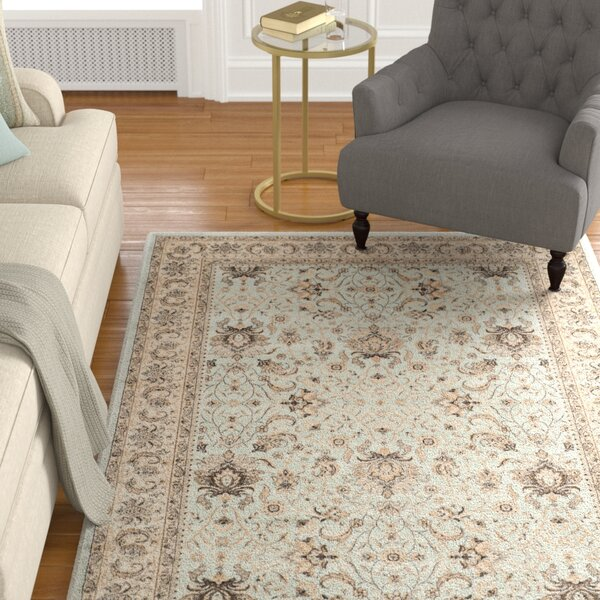 Petronella Light Blue/Ivory Area Rug by Charlton Home