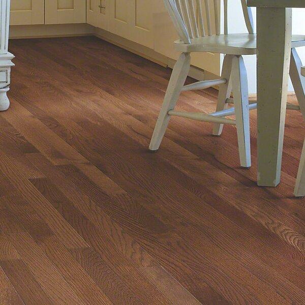 Sawgrass 3-1/4 Solid White Oak Hardwood Flooring in Laurel by Shaw Floors