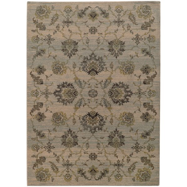 Gast Gray/Green Area Rug by Bloomsbury Market
