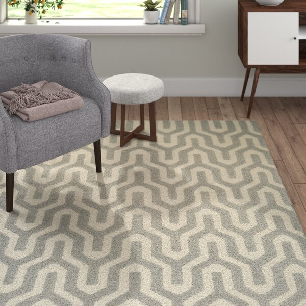 Lulu Hand-Woven Gray/Ivory Area Rug by Langley Street