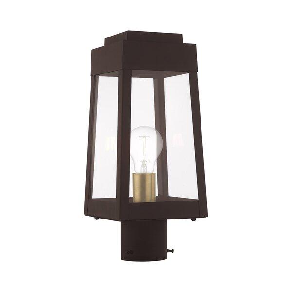 Mamie 1-Light Lantern Head by Canora Grey