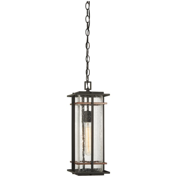 Plaisance 1-Light Outdoor Hanging Lantern by Loon Peak