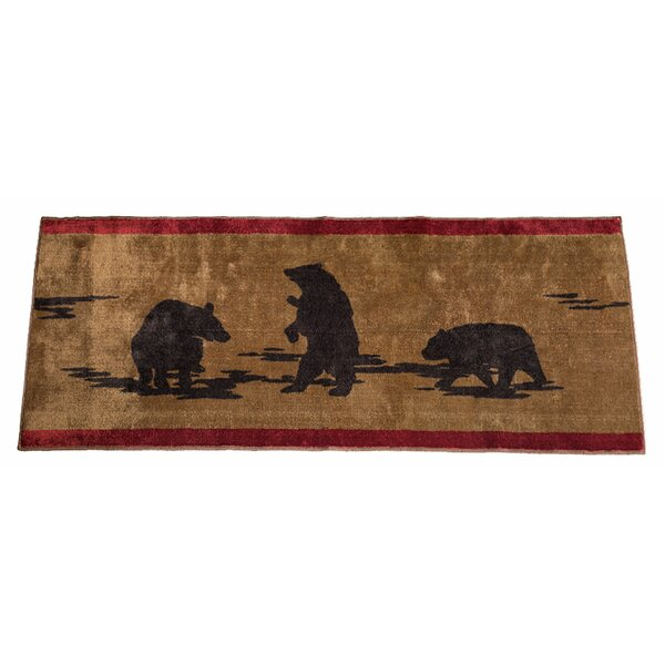 Grotto Bear Rectangle Chocolate Brown Area Rug by Loon Peak
