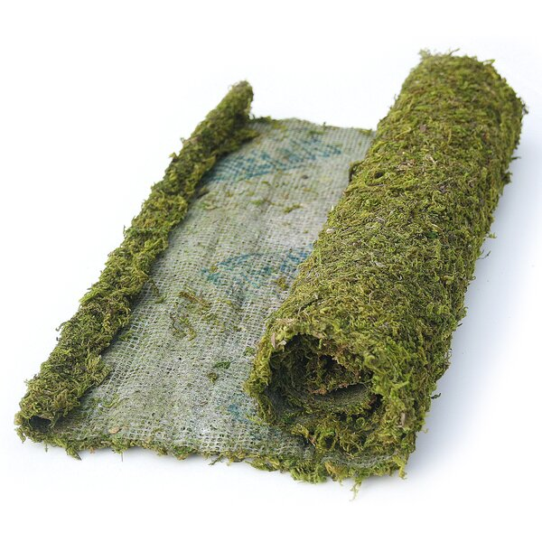 Instant Green All Purpose Moss/Mat Runner by SuperMoss™