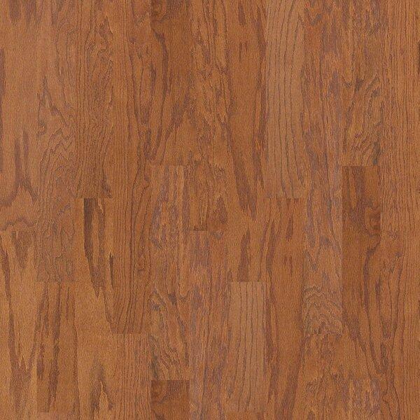 Oak Grove 5 Engineered Red Oak Hardwood Flooring in Laurel by Shaw Floors