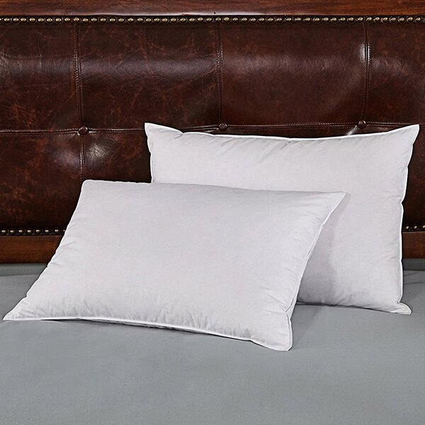 Kaiser Goose Soft Down and Feather Pillow (Set of 2) by Alwyn Home