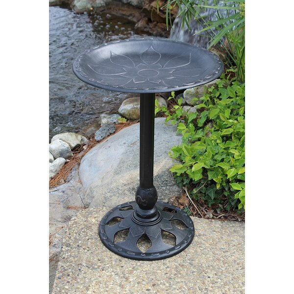 Floral Birdbath by Innova Hearth and Home