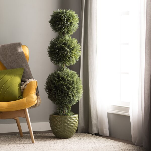 Triple Ball Cedar Topiary  in Planters by Darby Home Co