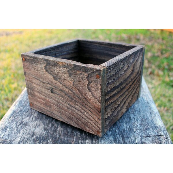 Posey Square Planter Box by Millwood Pines