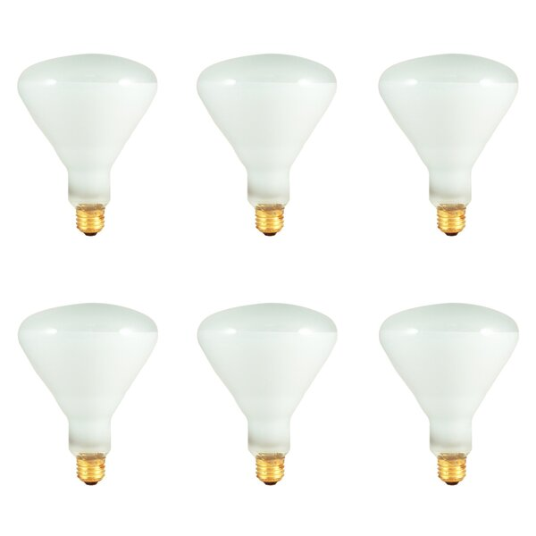 65W E26 Dimmable Incandescent Spotlight Light Bulb (Set of 6) by Bulbrite Industries