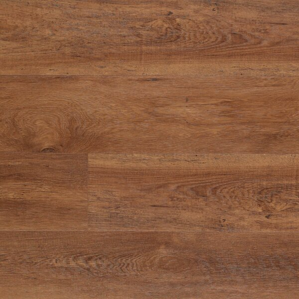 Dominion 6.13 x 54.34 x 12mm Chestnut Laminate Flooring in Morning Chestnut by Quick-Step