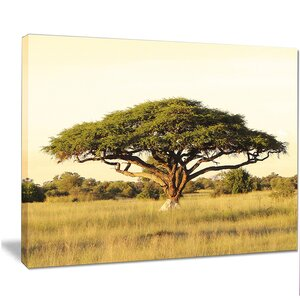 'Acacia Tree on African Plain' Photographic Print on Wrapped Canvas by Design Art