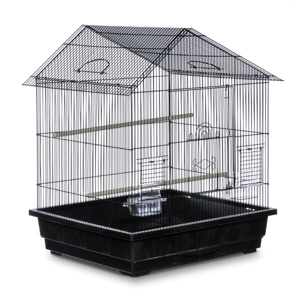 Offset Roof Cockatiel  Bird Cage by Prevue Hendryx