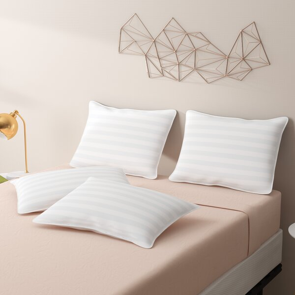 Eco Fiber Standard Pillow (Set of 4) by Alwyn Home