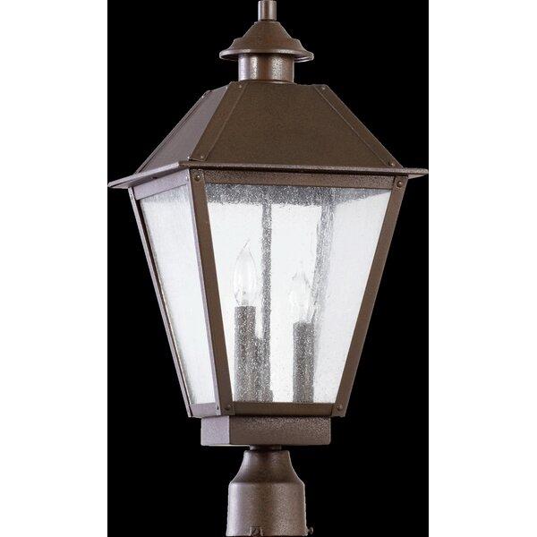 Mei Outdoor 3-Light Lantern Head by Alcott Hill