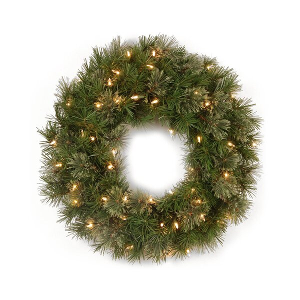 Lighted Mixed Cashmere Pine Artificial Christmas Wreath by The Holiday Aisle