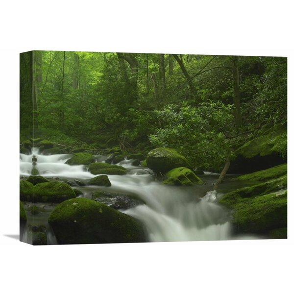 Nature Photographs Roaring Fork River Flowing Through The Great Smoky Mountains National Park, Tennessee Photographic Print on Wrapped Canvas by Global Gallery