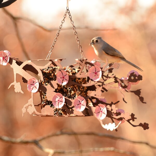 Cherry Blossom Window Decorative Bird Feeder by Desert Steel