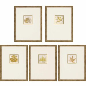 'Morphologies' 5 Piece Framed Painting Print Set by August Grove