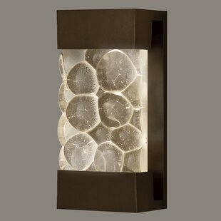 Affordable Price Crystal Bakehouse 2-Light Outdoor Flush Mount By Fine Art Lamps