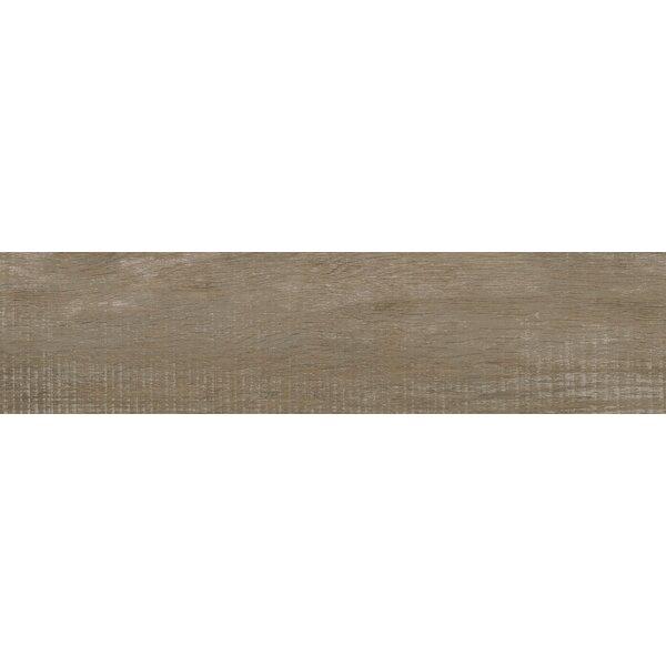 Helena Stable 6 x 40 Porcealian Wood Look Tile in Brown by MSI