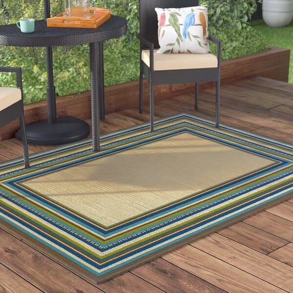 Brendel Hand Woven Brown Indoor/Outdoor Area Rug by Andover Mills