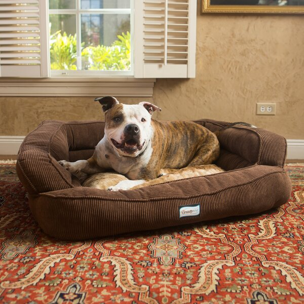 Beautyrest Colossal Rest Orthopedic Memory Foam Extra Large Dog Bed by R2P Pet Ltd.