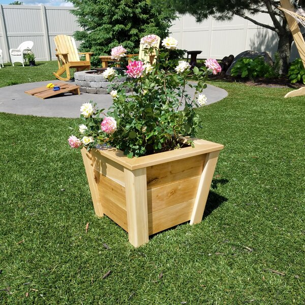 Alvarenga Oak Pot Planter by Highland Dunes