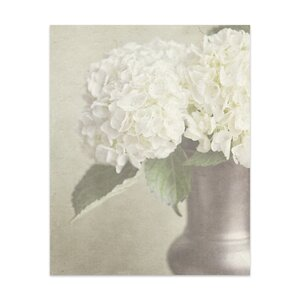 'White Hydrangea' by Lisa Russo Photographic Print by KAVKA DESIGNS