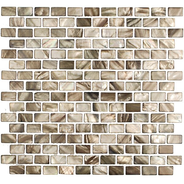 Pitzy Donegal 1 x .5 Glass  Pearl Shell Mosaic Tile in Gray by Splashback Tile