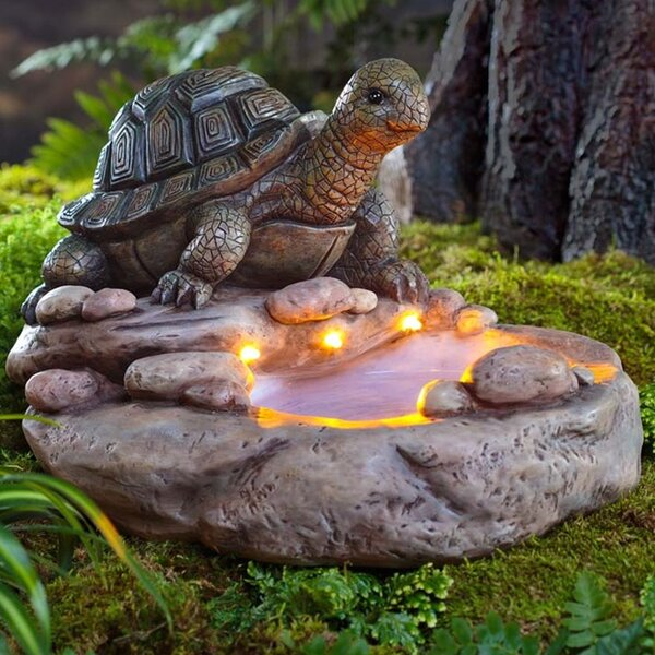 Turtle Solar and Lighted Birdbath by Wind & Weather