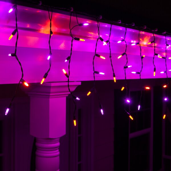 70 Purple/Amber LED Icicle Light String by Wintergreen Lighting