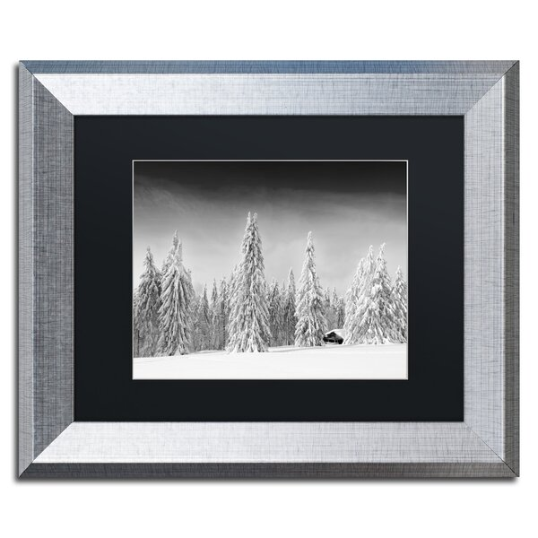 White World by Philippe Sainte-Laudy Framed Photographic Print by Trademark Fine Art