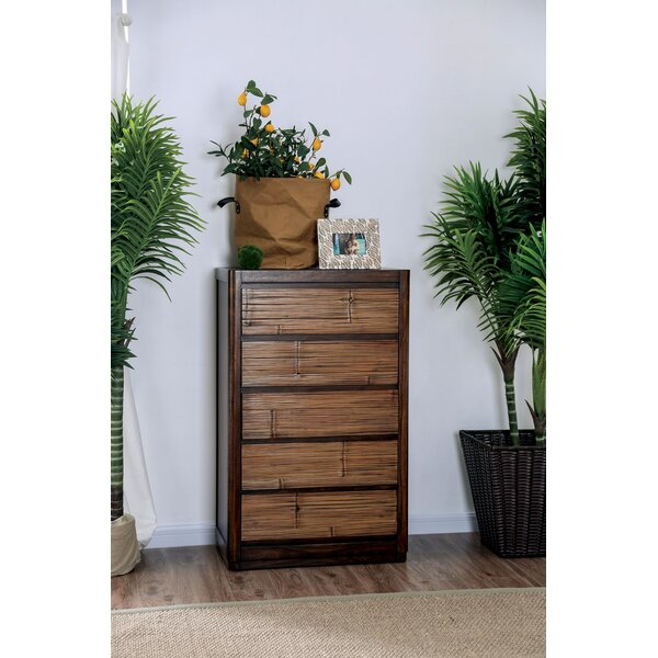 Anders 5 Drawer Chest by Bay Isle Home