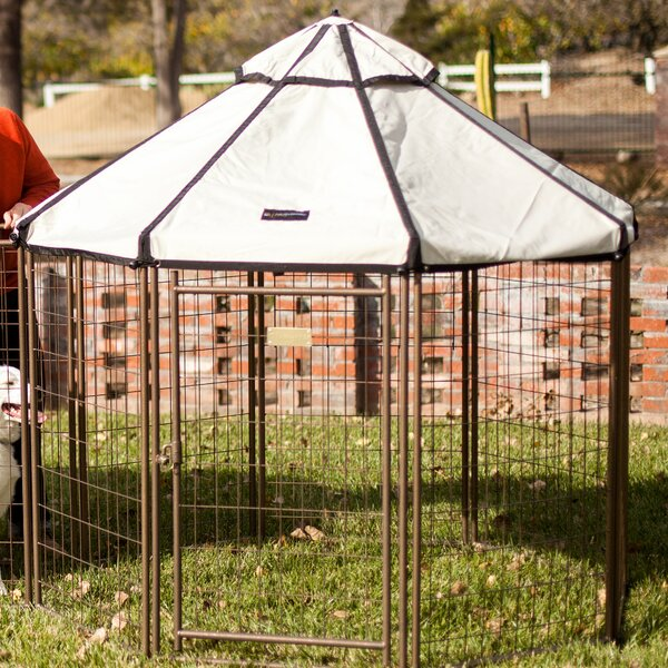 Advantek Halpern Pet Gazebo by Tucker Murphy Pet