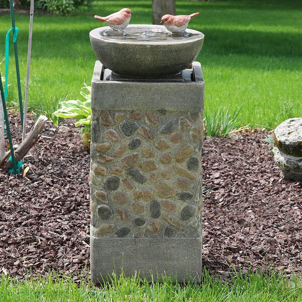 Cletus Fiberglass Birdbath Basin on Pedestal Garden Water Fountain by Darby Home Co