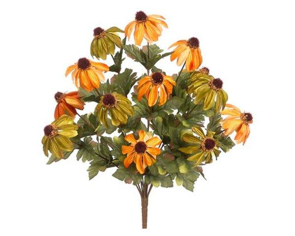 Rudbeckia Flowers by Loon Peak