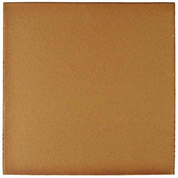 Shale 9.63 x 9.63 Ceramic Field Tile in Brown by EliteTile