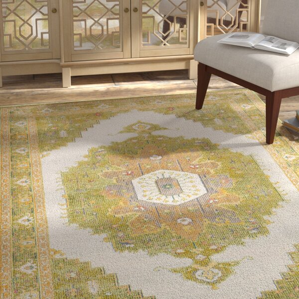 Lillo Distressed Traditional Lime/Tan Area Rug by Bungalow Rose