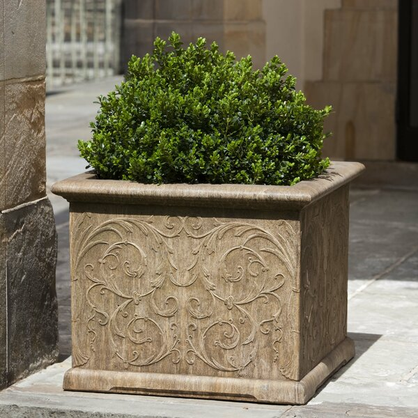Vernetta Square Cast Stone Planter Box by Darby Home Co