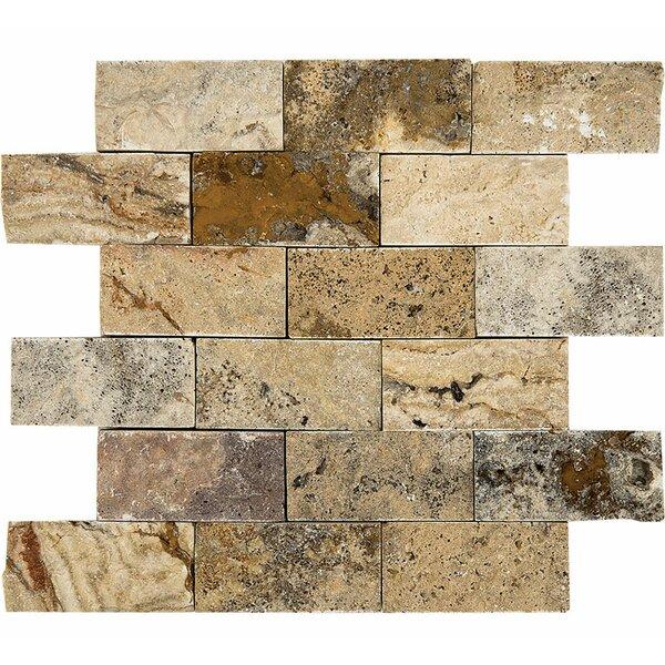 Scabos Split Face 2 x 4 Stone Mosaic Tile by Parvatile
