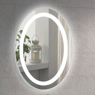 Illuminated Oval Bathroom  Vanity Mirror Plug In Light Strip Wayfair