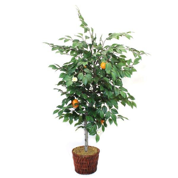 Faux Orange Floor Tree in Pot by World Menagerie