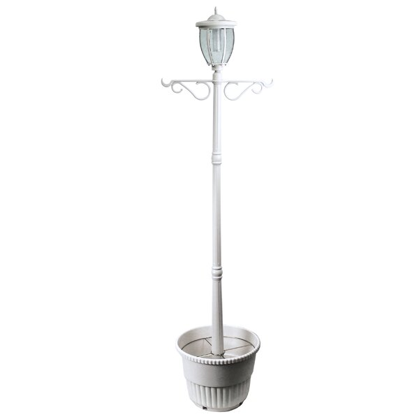 Beckwood Solar Lamp 1-Light 84'' Post Light by Alcott Hill