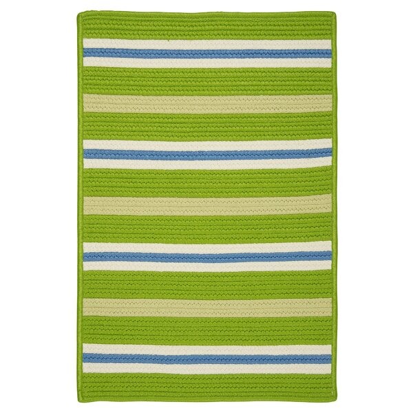 Painter Garden Bright Braided Green Indoor/Outdoor Area Rug by Colonial Mills