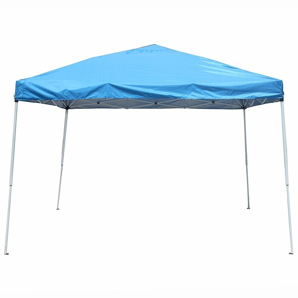 Collapsible 10 Ft. W x 10 Ft. D Steel Pop-Up Canopy by ALEKO