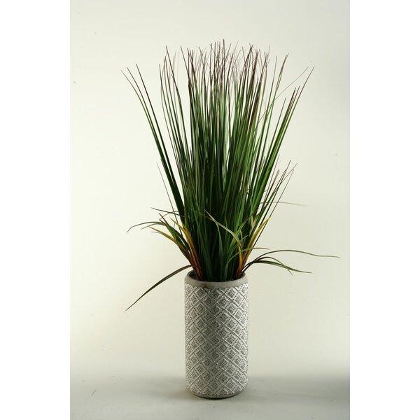 32 Onion Grass in Ceramic Decorative Vase by D & W Silks